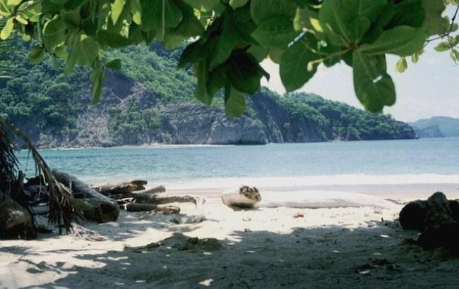 Die schönsten Strände in Costa Rica: Isla Tortuga